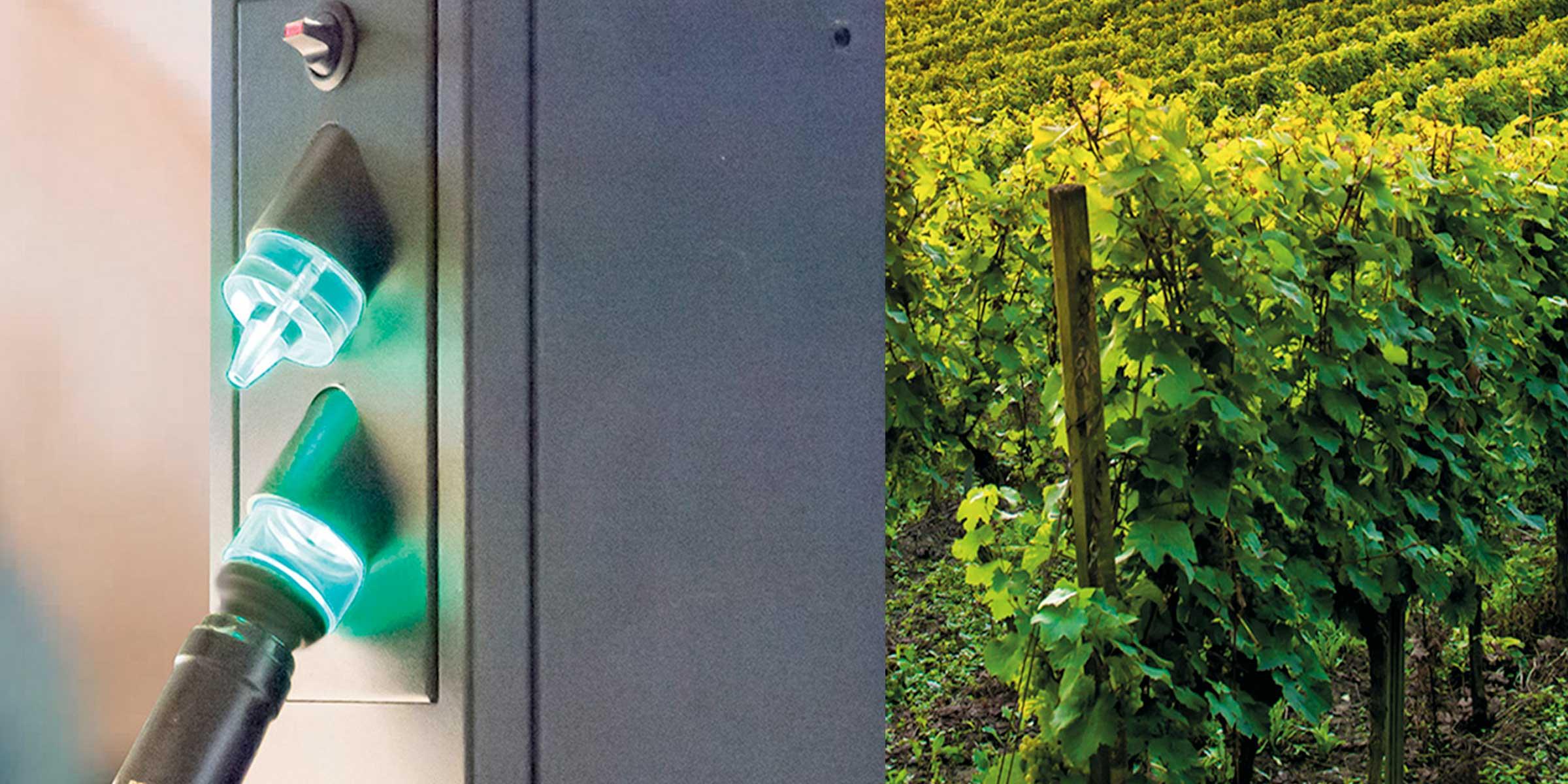 Systeme für den Wein-Offenausschank